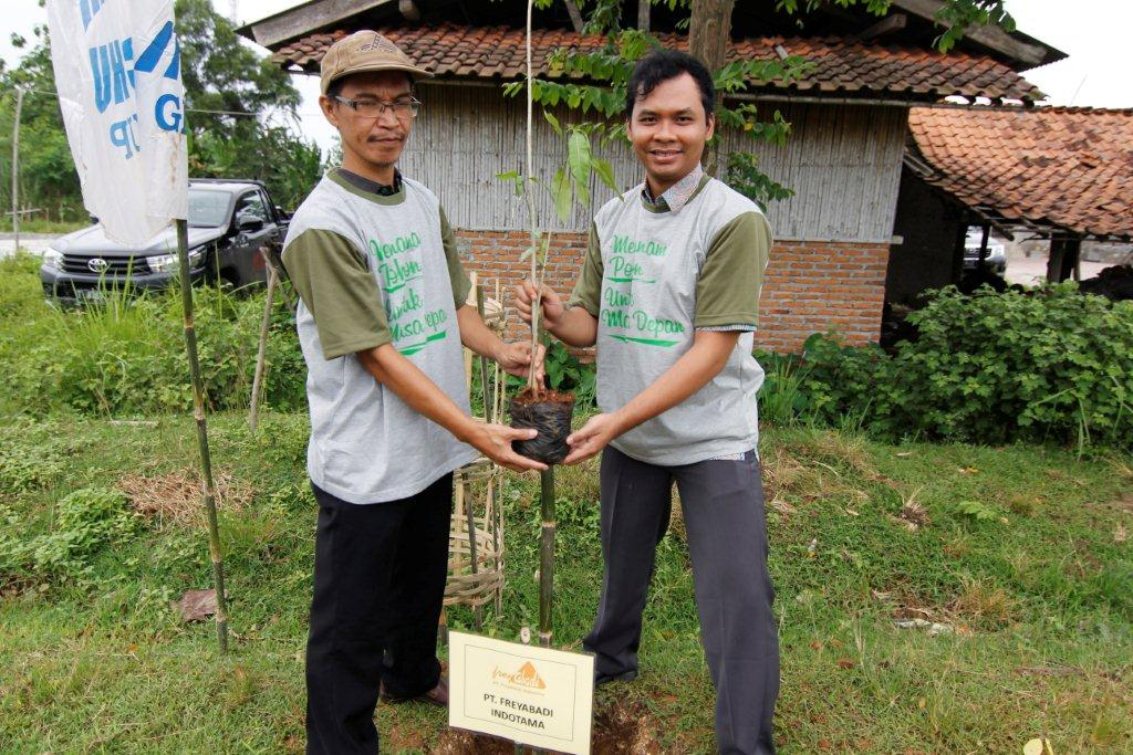 tree planting in the village 2